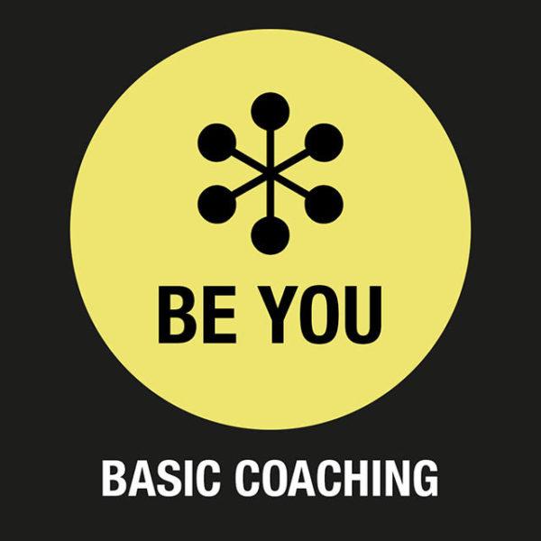 Online Coaching, Executives, Leadership Coaching