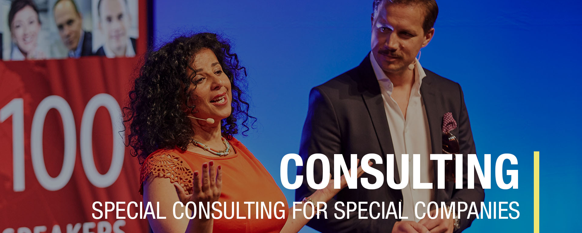 Consulting, change management, organizational development, process optimization